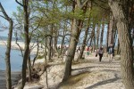 Plaża w Dębkach i rzeka Piaśnica