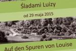 Plakat_Sladami-Luizy
